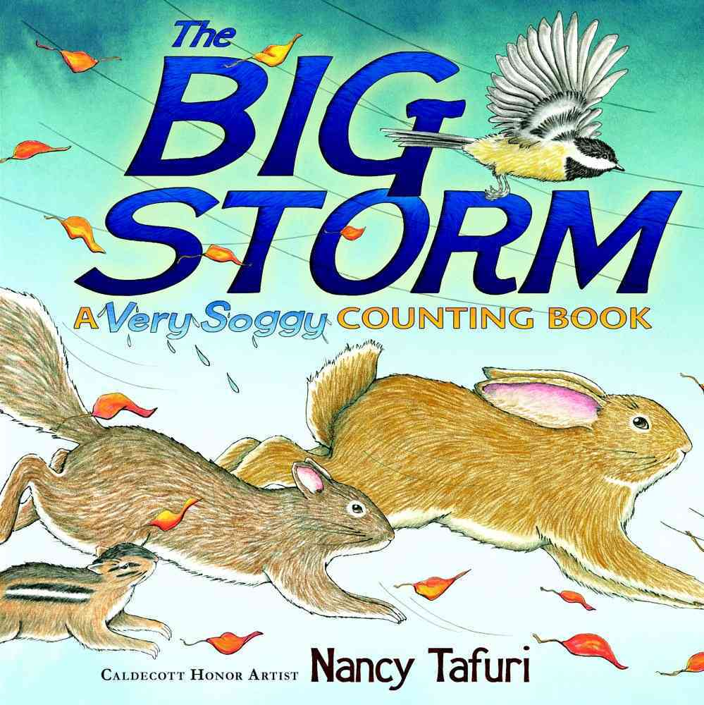The Big Storm By Tafuri, Nancy/ Tafuri, Nancy (ILT)